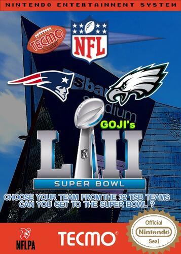 Goji's NFL Tecmo Super Bowl LII Cover 1.jpg