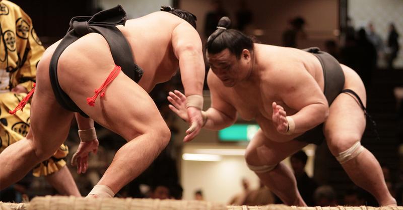 sumo.thumb.png.9ee23124fcc205eb2e991ad00e005540.png